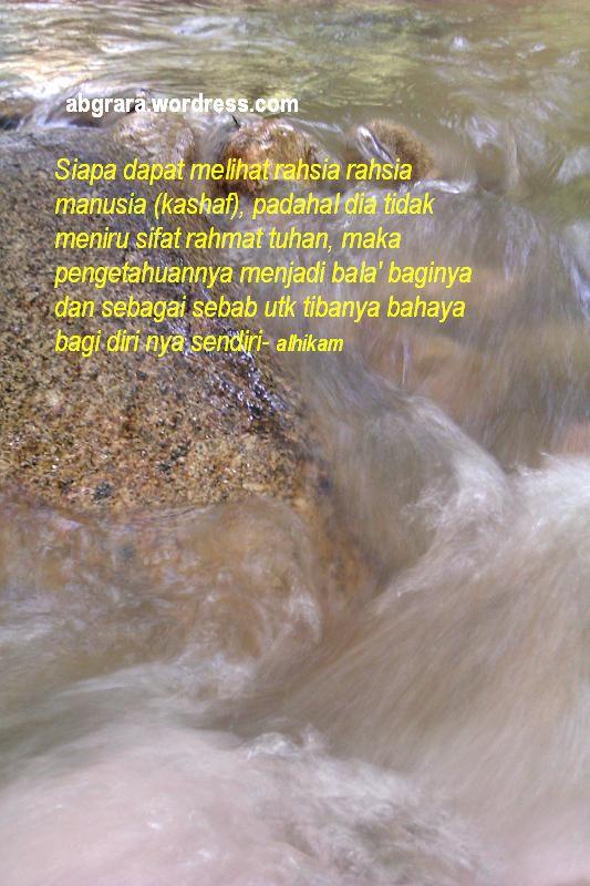 IMAG0371