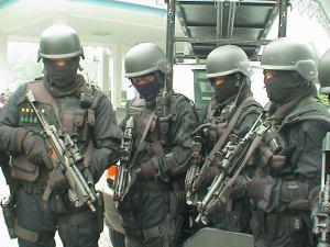 Komando gerak khas, pasukan elit negara