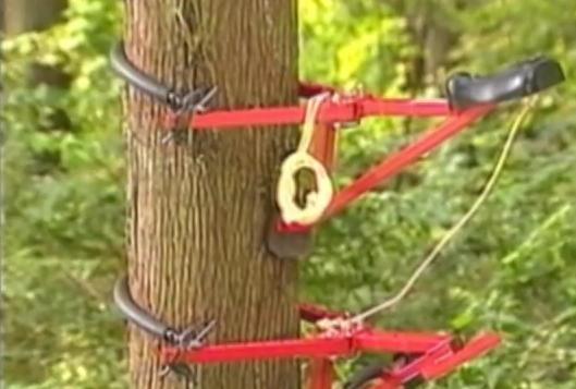 alat panjat pokok